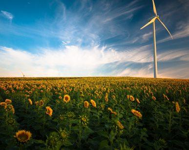 13992StepStone Achieves Carbon Neutrality